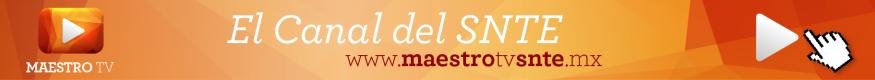 Maestro TV - SNTE