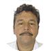 Mauricio Mendoza Palomares