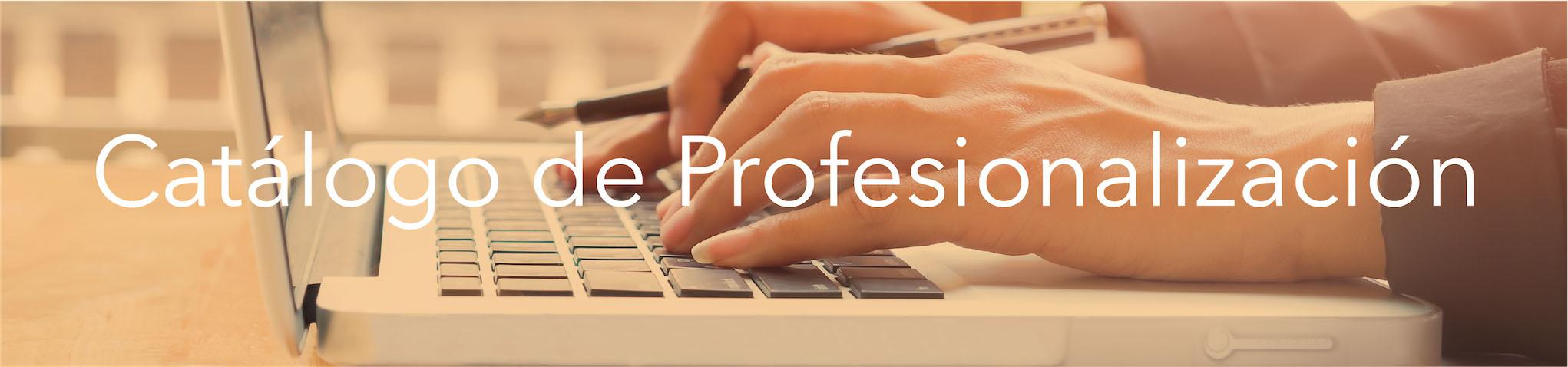 Catálogo de Profesionalización